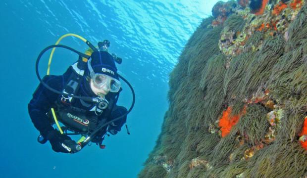 Diving a San Vito lo Capo