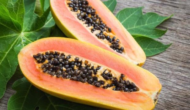Stress ossidativo e la papaya fermentata