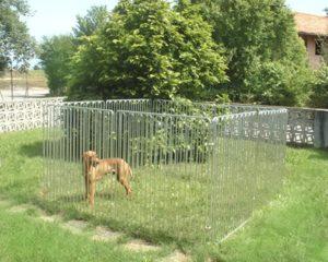 recinto per cani