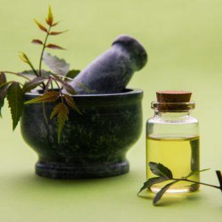 Olio di neem Citriodora: un prodotto dalle mille potenzialità